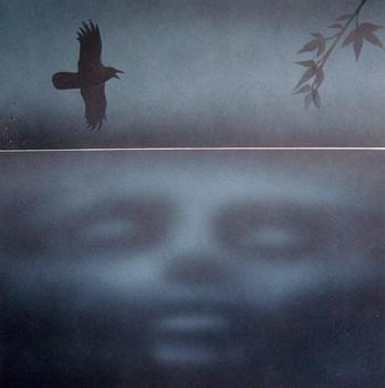 20100920061319-reflecti
