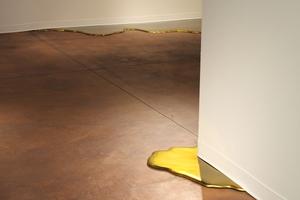 20100920104336-gold_flood_24