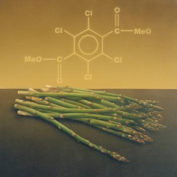 Asparagus-_-dacthal