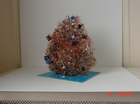 20100921183653-tree01
