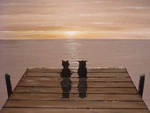 20100923125216-owlandpussycat