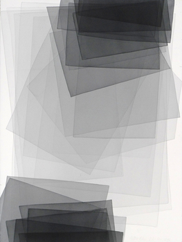 20101006013301-p1060426