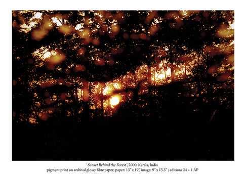 20101011002745-sunset_behind_the_forest_2001