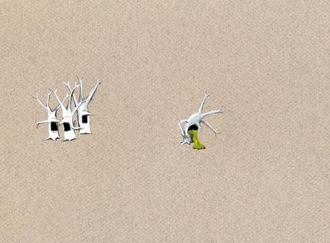 20101015100334-p8_sicktree1_l