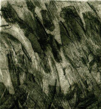 20101020053357-la_ira_de_la_tierra