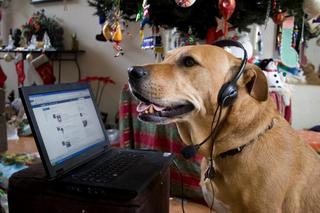 20101020113643-garcia_headset
