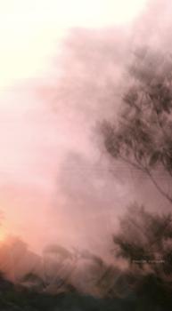 Bel_2007_10_25_sunsmokefire_104