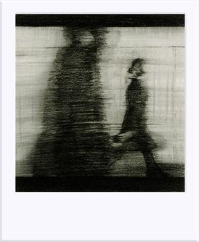 20101027073213-polaroid-platform