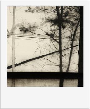 20101027073941-polaroid-ixopo