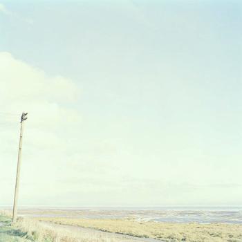 20101028130717-_3_going_away_rampside_telegraph_pole_cumbria_peter_bennett
