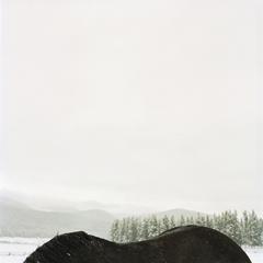 20101101174749-horsebackmtn
