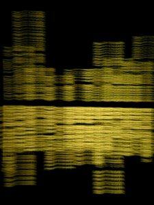 20101102140117-socalportrait-creditdue1