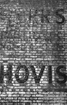 20101106022747-hovis