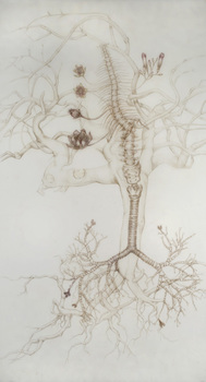 20101109102133-bronchial_vine__2010__72_22x36_22_colored_pencil_on_duralar