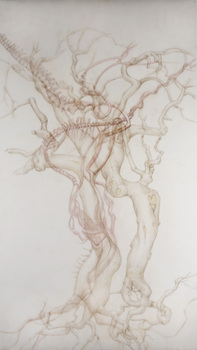 20101109102427-vertebral_vine__2010__72_22x36_22__colored_pencil_on_duralar