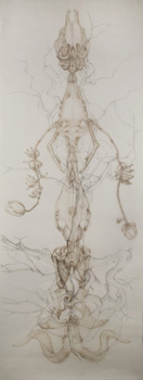 20101109102636-bone_vine_2__2010__118_22x36_22__colored_pencil_on_duralar