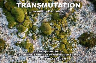20101111201651-transmutation1