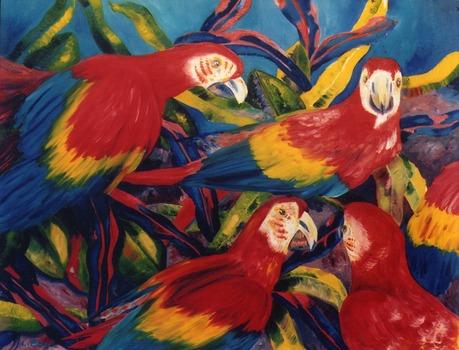 20101112122558-11_11_parrots