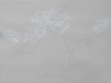 20101115170424-alpine_butterfly_knot