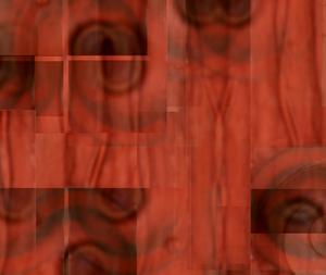 20101208112248-nicole_landau_-_red_river