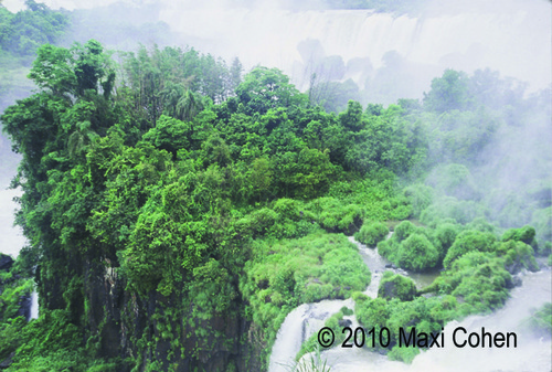 20101119140220-cohen_iguacu_falls