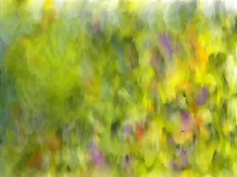 20101120062619-the_garden16_nov