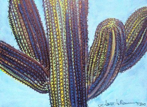 20101122011131-cactus