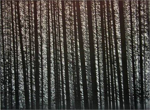 20110205073159-forest_murmurs