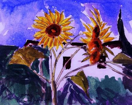 20101205183921-laromitasunflower