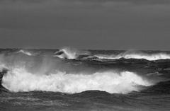 20101206072616-wildwavesbw
