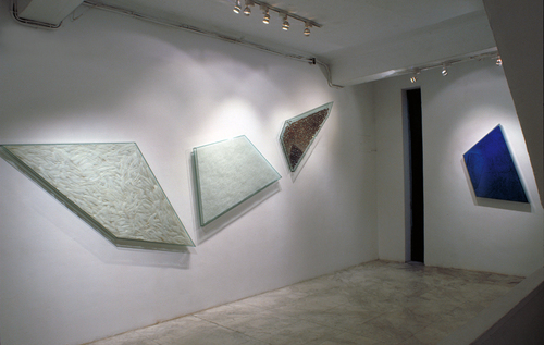 20101215150536-1997-2installation_view_of_smiles_of_the_skeptic