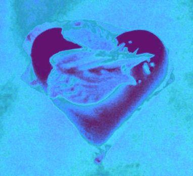 20101209081842-heart4