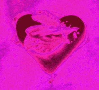 20101209084158-heart7