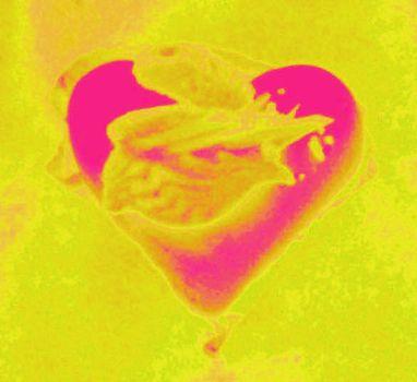 20101209085001-heart8
