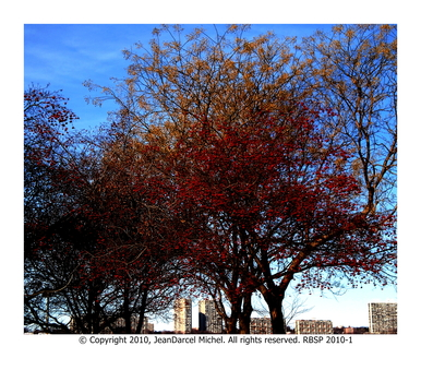 20101209190612-panorama_9_rbsp_2010-1