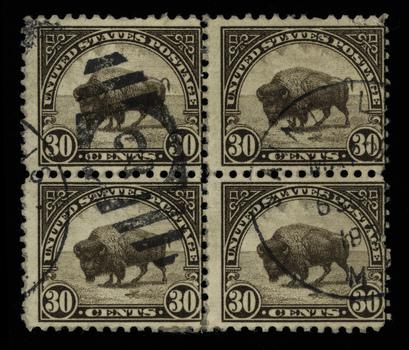 20101216131534-buffalostampede