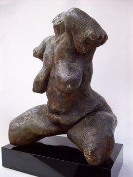 20101216155050-torso