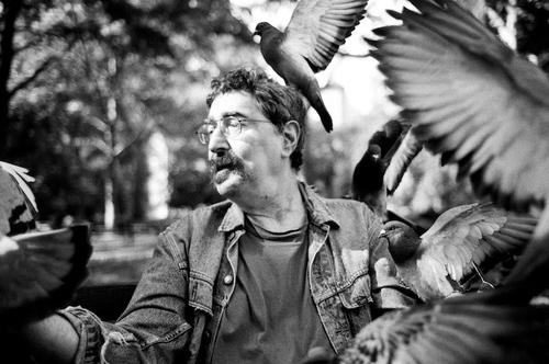 20101220201113-birdman