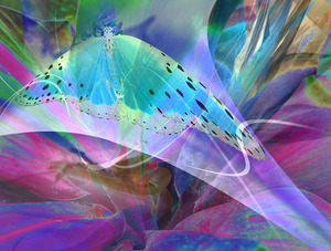 20120209213825-visionary5