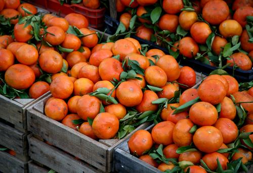 20101226172515-mandarinas_4