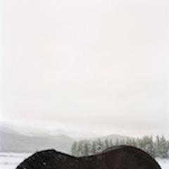 20110308091650-bekman_plumb_horseback_thmb
