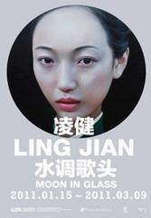 20101228223118-lingjian_1_