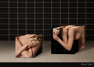 20110105122130-boxednudes