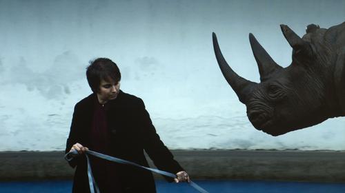 20110105134801-jt_rinoceronte