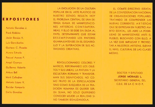 20110105151142-plastica_guanajuatense-02