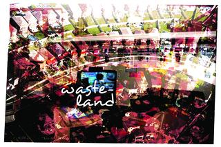 20110110111414-wasteland