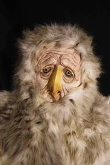 20110111120610-owl