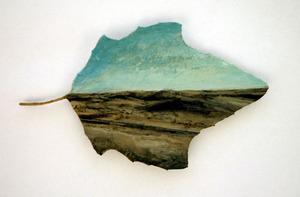 20110113051441-desert