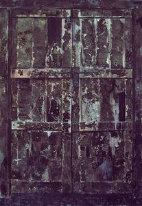 20110114221937-door_i
