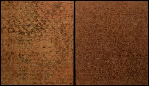 20110115184746-marimarks_sedimentary_series__terra-sienna__2008___diptych_44_in